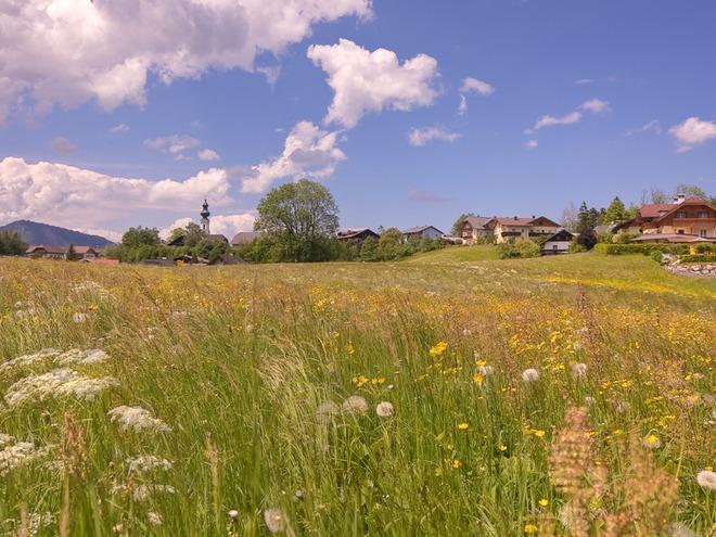 Faistenau Dorfansicht Sommer