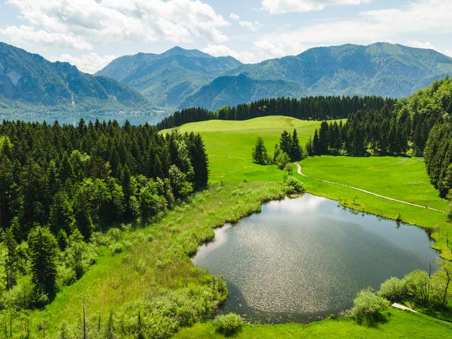 Hochmoorgebiet Egelsee
