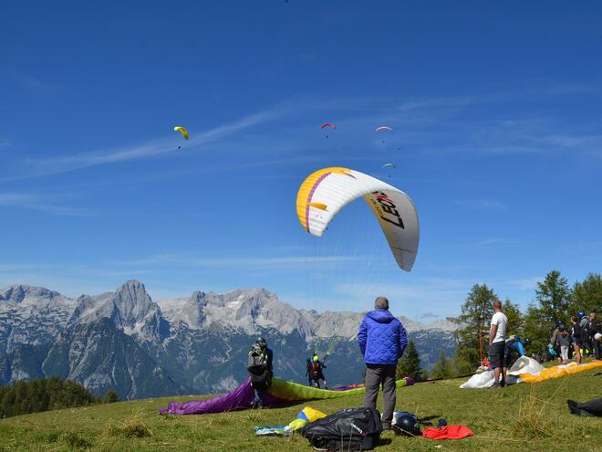 Paragliding and Hang-gliding School
