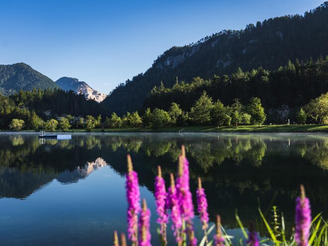 Angeln am Elisabethsee