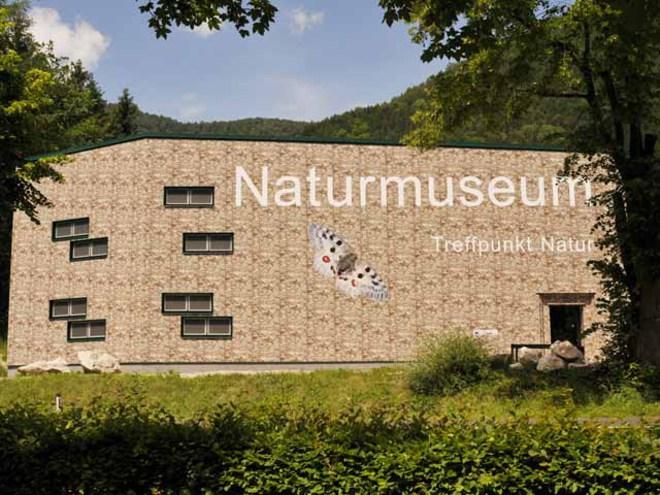 Naturmuseum Salzkammergut Ebensee