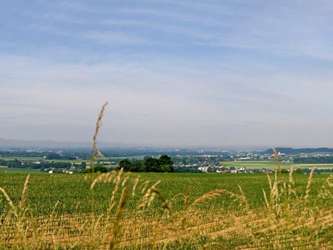 Panoramablick Perg Weinzierl