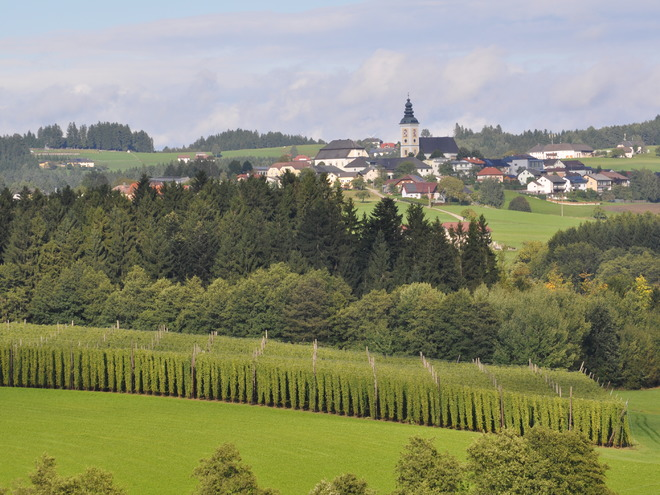 Besuch beim Mühlviertler Hopfenbauern mit Schaubrauerei - Feiern und Übernachtung