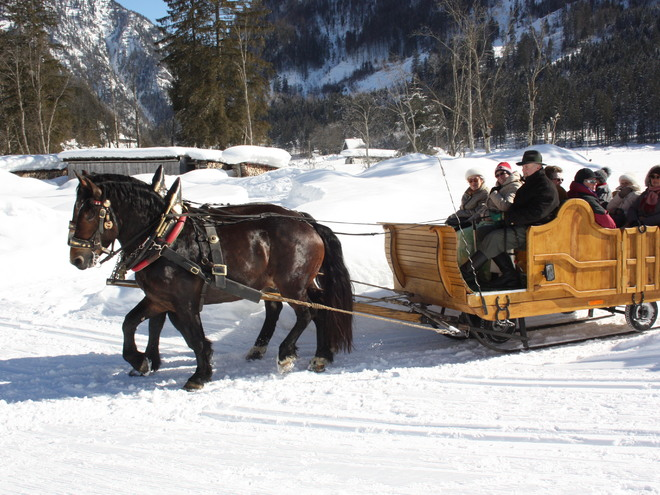 Horse Drawn Sleigh Ride in Gosau