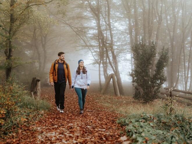 Wildholzweg