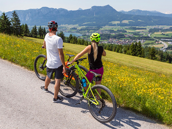 Mountainbike-Tour Mondseeberg I