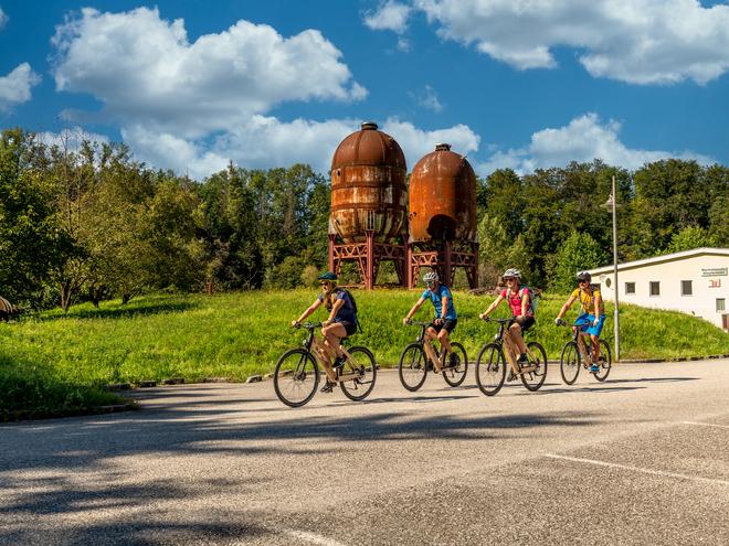 Traunradweg (© OÖ.Tourismus/Weissenbrunner)
