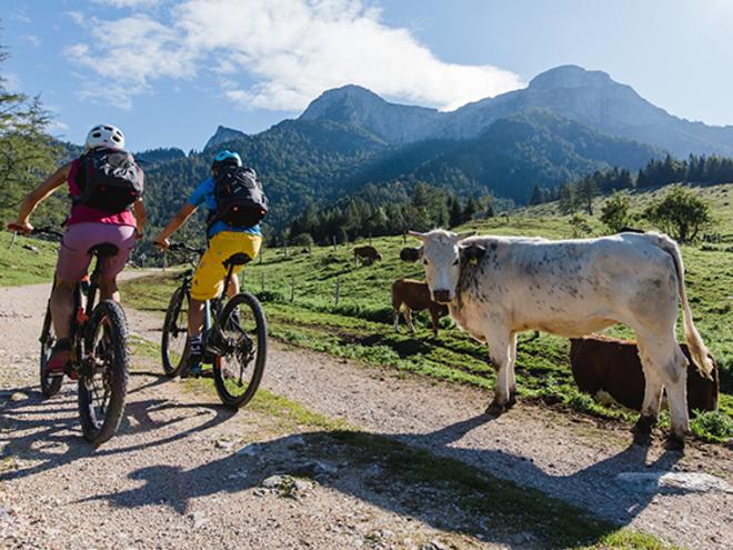 Eisenaueralm mit dem Mountainbike