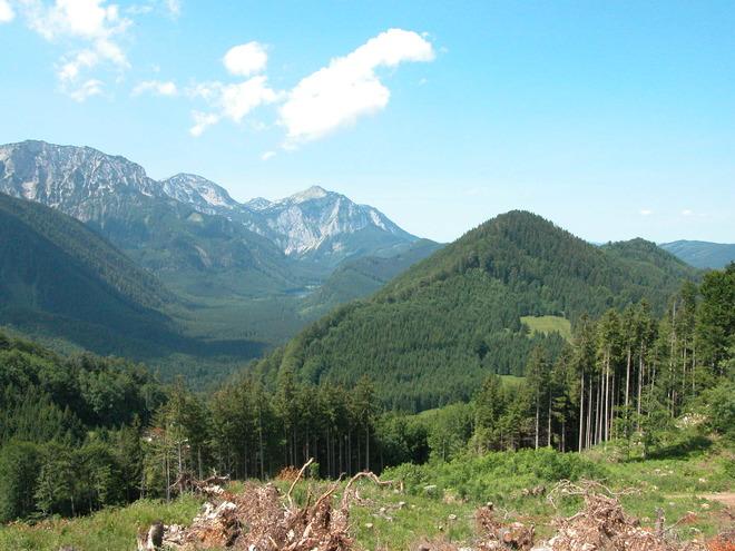 Mountainbikestrecke Sonnsteinrunde
