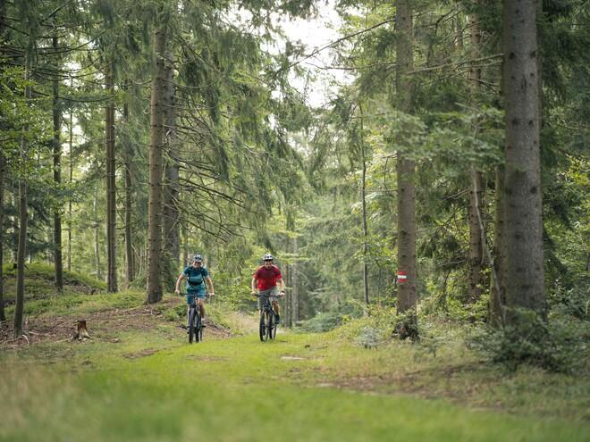Pierbach-Tour Nr. M2