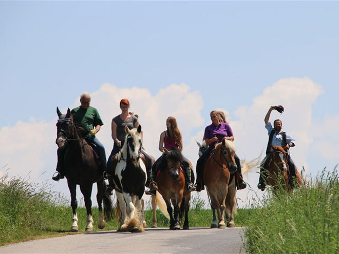 Almtal horseback riding path - Traunreiter - a fantastic horseback riding path net