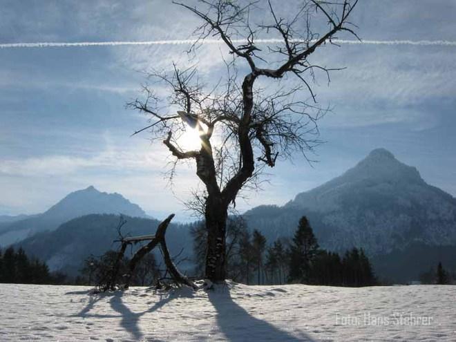 Rieder Rundweg / Winterwanderweg 3