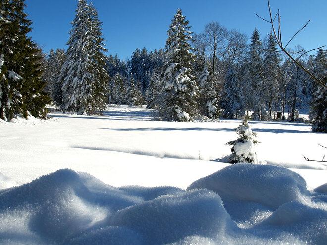 Schneeschuhwanderung zum Lichtenberg