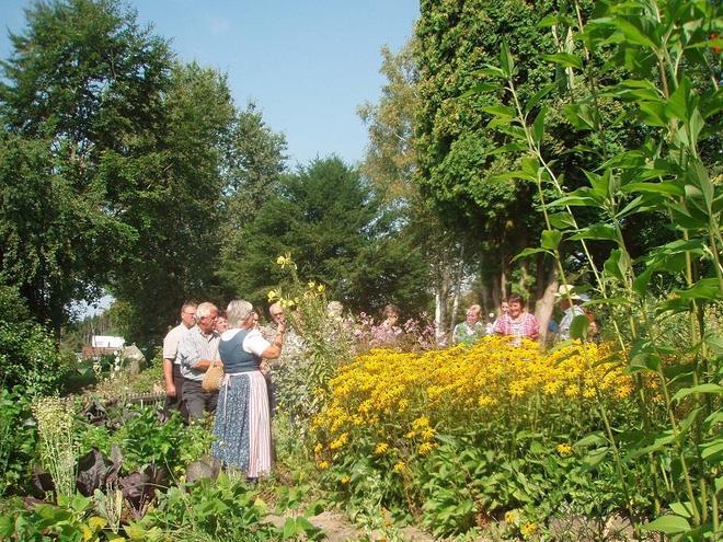 Es herbstelt im Heilkräutergarten