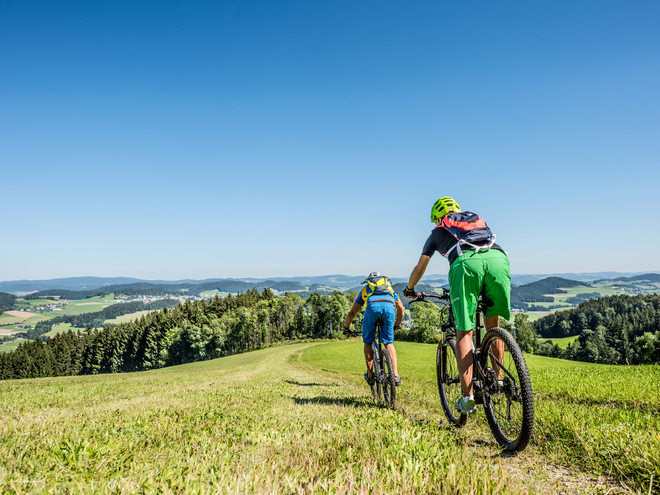 E-Bike Tour mit Guide am Salzweg - Bison Trail