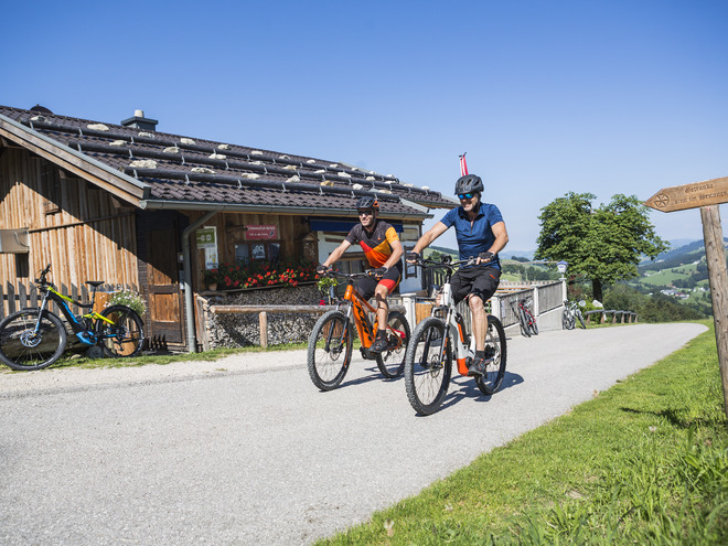 E-Bike Tour mit Guide am Donau - Moldau Trail