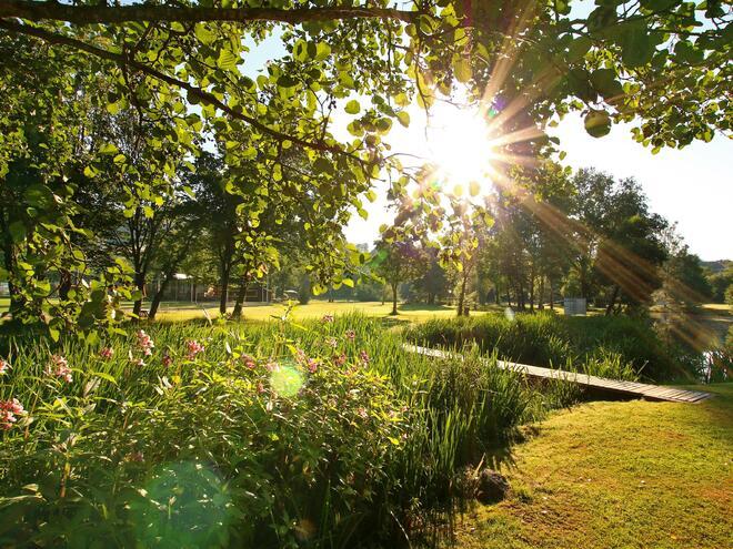 Campingplatz Haslach
