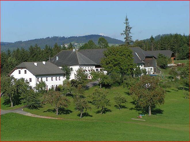 Bio-Bauernhof Zizlbauer