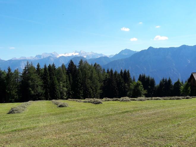 Ferienhütte Kriemoos