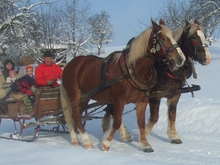 Horse-drawn carriage rides in summer and winter