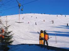 Skilift Thalgauberg
