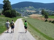 11,7 km: Böhmerwaldblickweg