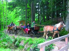 Horse drawn carriage rides in Fuschl am See
