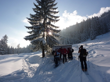 Guided tour through the ski tour educational trail