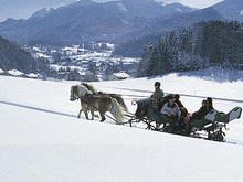 Horse drawn slide ride through the winterly Fuschl am See