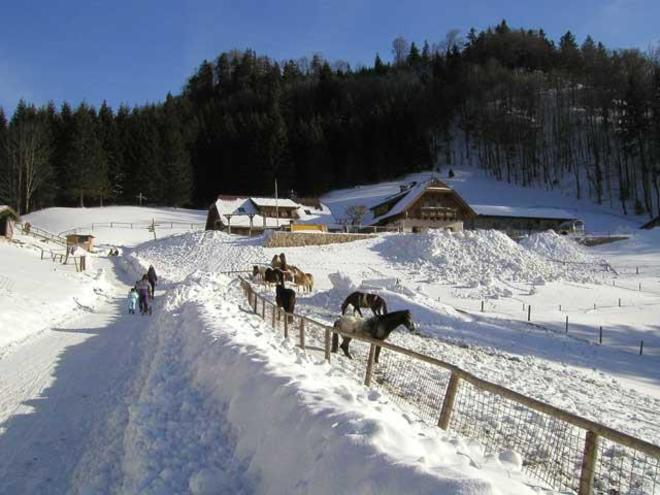 Almgasthof Hochsteinalm Winter
