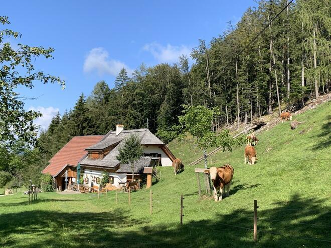 Bergerbauern-Reith