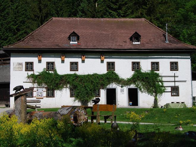Konrad Lorenz Forschungsstelle für Ethologie - Außenstelle der Universität Wien