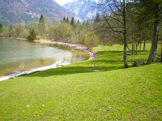 Dog bathing area at Lake Hallstatt