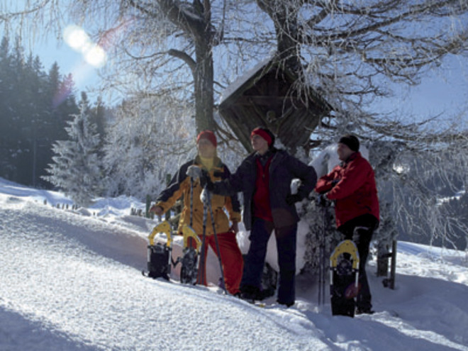 Guided Snowshoe Hike in Fuschl am See