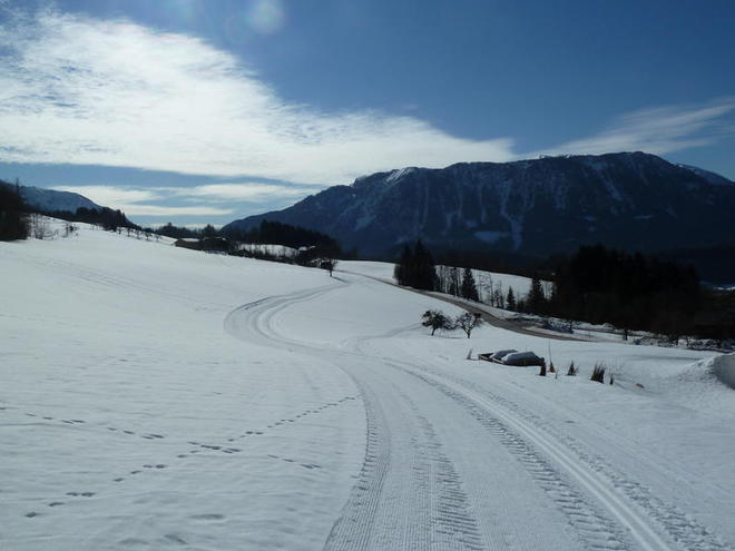 Oberwenger Winklertal valley cross-country trail (S3)
