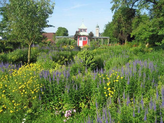 Veronikas Garten in Pettenbach im Almtal 1