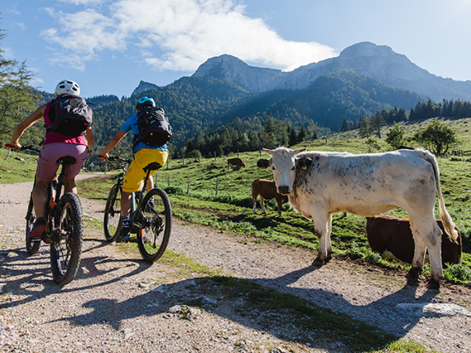 Mountainbike-Tour Eisenau Alp