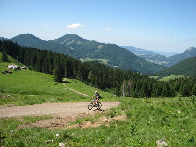Moutainbike-Strecke Faistenauer Schafberg - Loibersbacher Höhe
