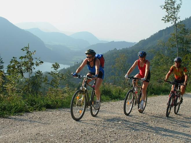 Mountainbike-Strecke