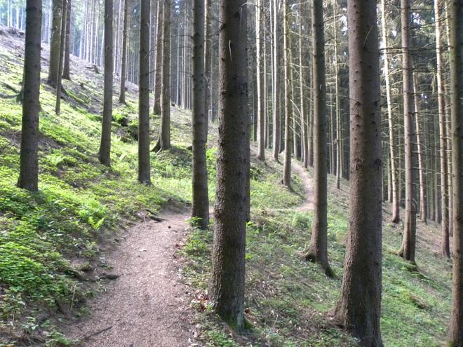 Erholung und Ruhe finden: Etappe 2
