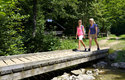 Wandern am Grünberg (© TVB Ferienregion Traunsee)