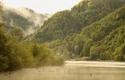 Gewitterstimmung, Biotop an der Donau   © Hermann Baumgartner