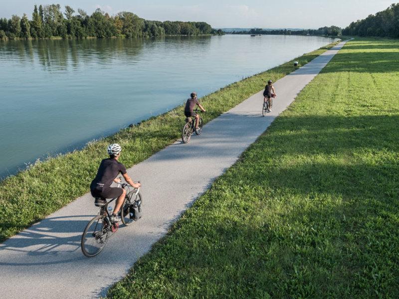 Radfahren am Donauradweg bei Aschach