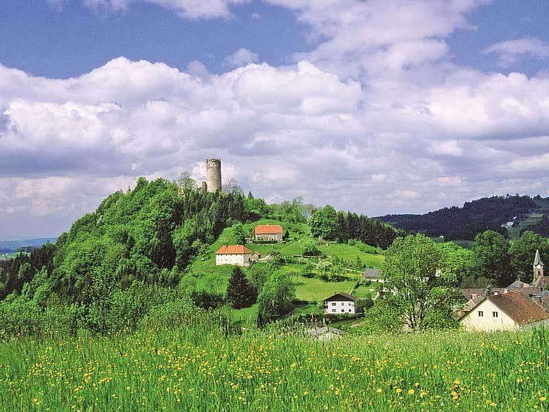 Die Burgruine in Waxenberg.