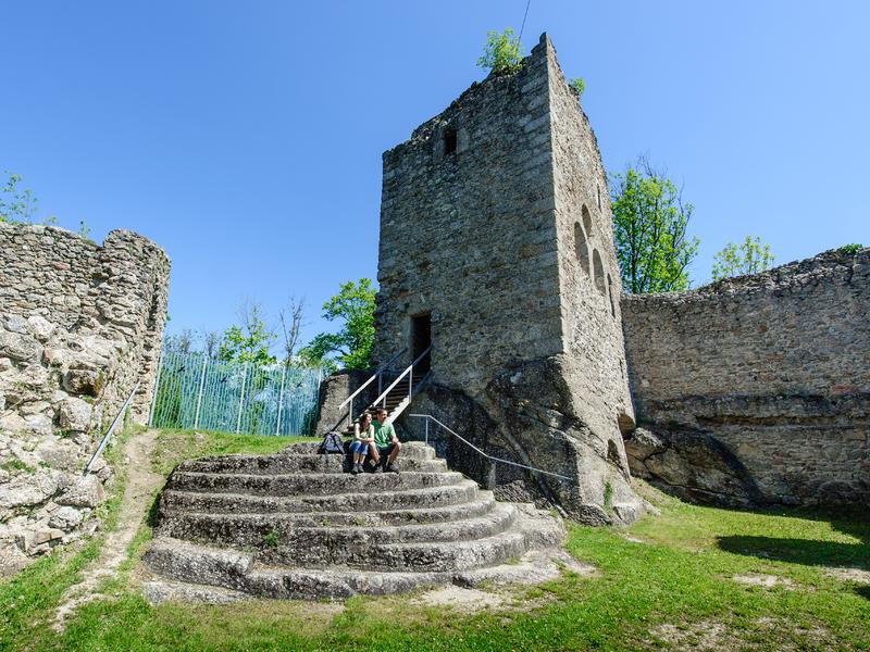 Ruine Ruttenstein Detail