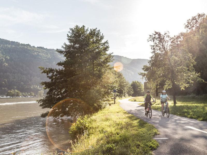 Am Donauradweg in der Schlögener Schlinge