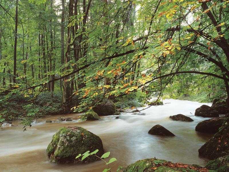 Waldaist-Tal