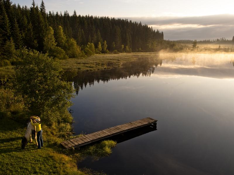 Rubener Teich Tanner Moor