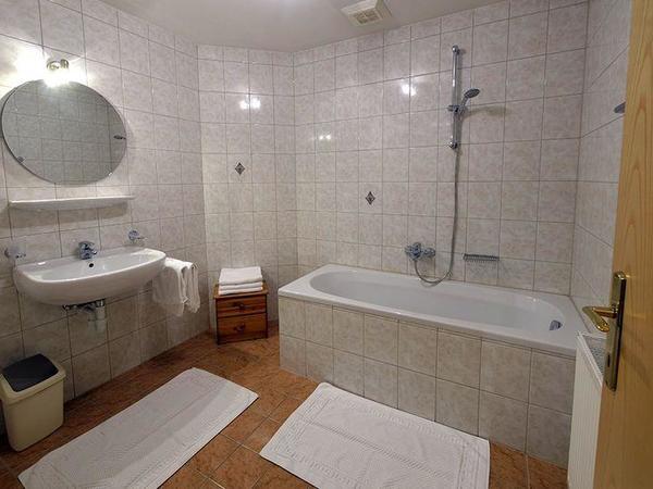 Zillertal-Fuegen-Appartements-Huber-Top8-Badezimme