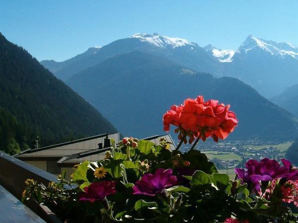 Aussicht Balkon Sommer